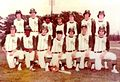 MCHS 1973 AAA Baseball State Champions.jpg