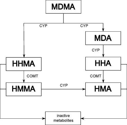 MDMA - Wikiwand