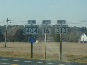 Maryland Route 313 - Shields for MD 16, MD 313, and MD 404 along a concurrency.