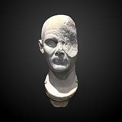 Head on an unidentified man