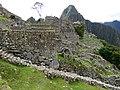 Machu Picchu Peru 114.jpg