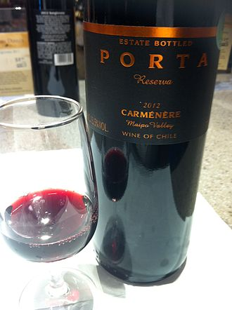 Maipo Province - A Carmenere from the Maipo Valley.