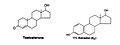 Male (left) and female (right) hormones (Ganong, 2005, pg.429, pg.440).jpg