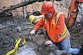 Mammoth bones found at OSU expansion of Valley Football Center - DSC 0438 - 24649603825.jpg