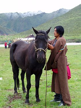 Man and horse in Gansu, China.jpg