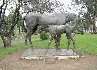 Scone, New South Wales - Mare and foal, Scone