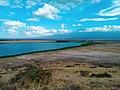 Marsh in Amboseli National Park.jpg