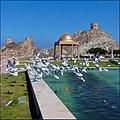 Masqat - sea-gull's dance in the promenade - panoramio.jpg