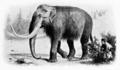 Mastodon 15 feet tall.png