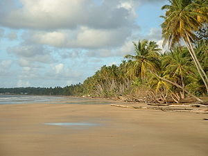 Trinidad and Tobago - Mayaro Beach, in the southeastern area of Trinidad.