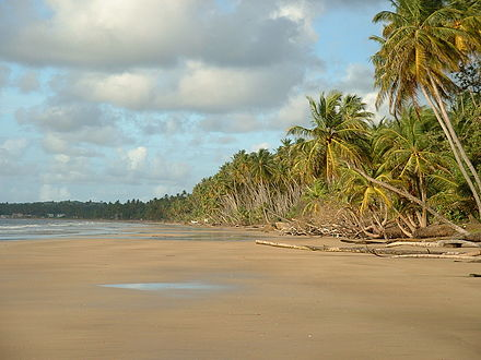 Mayaro Beach, in the southeastern area of Trinidad Mayaro Beach; Trinidad & Tobago.jpg