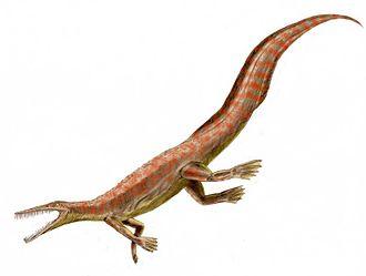 Mesosaur - Mesosaurus