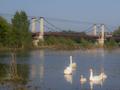 Meung - La Loire.png
