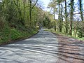 Middle Wood Road - geograph.org.uk - 1248438.jpg