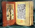Miscellanea armena, xvii-xviii sec., adamo ed eva, ashburnham 1242.JPG