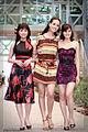 Miss Vietnam 2006 Thanh, Thuy and Thu.jpg