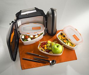 sample packed lunch