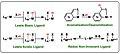 Modes of Metal Ligand Cooperativity.jpg