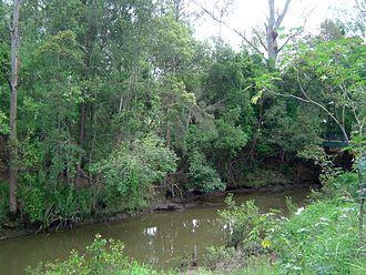 Kenmore, Queensland - Moggill Creek, 2012