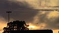 Moncton Sunset over bank (8296490547).jpg