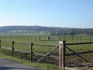 Montferland - Countryside in Montferland