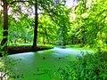 Mooi natuur Lanaken - panoramio.jpg