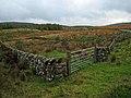 Moorland near Stroanfreggan - geograph.org.uk - 376124.jpg