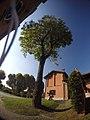 Morimondo - Via Attilio Fratelli - panoramio (1).jpg