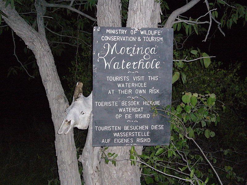 File:Moringa Waterhole.jpg