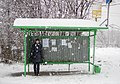 Moscow-oblast-bus-stop-russia-snow-november2017.jpg