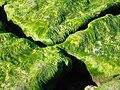 Moss on a Rock.jpg