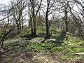 Motte at Castlebythe - geograph.org.uk - 393240.jpg