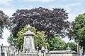 Mount Jerome Cemetery - 131442 (35537552564).jpg