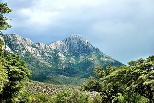 Santa Rita Mountains - Image: Mount Wrightson from Madera Canyon