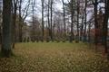 Muecke Nieder-Ohmen Friedhof Juedisch f.png