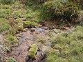 Murrumbidgee Headwater Peppercorn Hill (3).JPG