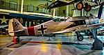 N190BR 2009 RUSSELL ROBERT R JR Focke-Wulf Fw-190-A8 Replica C N 005 (43552206714).jpg