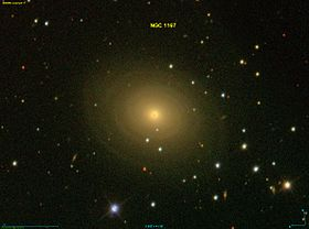 Image illustrative de l'article NGC 1167
