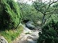 Na skałach nad Doliną Echa - panoramio.jpg