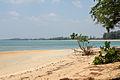 Nai Yang Beach, Phuket (4448530060).jpg