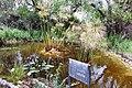 National Botanic Garden of Israel 23.jpg