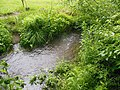 Naturdenkmal Pulvermühlbach 01.JPG