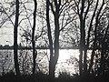 Naturschutzgebiet Ewiges Meer 31-10-2018 Chr Didillon DSC01778 (83).jpg