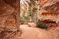 Navajo Loop Trail, Bryce Canyon National Park (3447059558).jpg