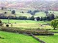 Near Low Rigg , Lake District - geograph.org.uk - 11023.jpg