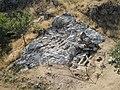Necrópolis rupestre de San Vitor de Barxacova (Parada de Sil) (7931232274).jpg