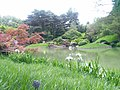 New York Botanical Garden 18.jpg