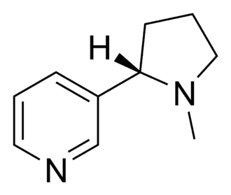 Nicotinic agonist - Chemical structure of nicotine