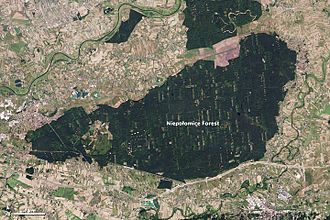 Niepołomice Forest - Since the 1200s it has been a forest of special use and protection in Poland. In this view from space, different coloration can indicate different functions.
