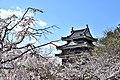 Nishio Castle.jpg